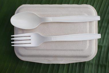 Biopohjaiset ja -hajoavat pakkaukset